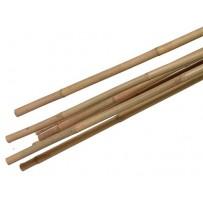 bamboestokken kopen